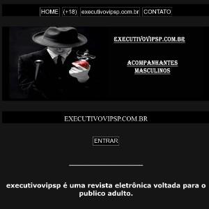 Executivovipsp.com.br